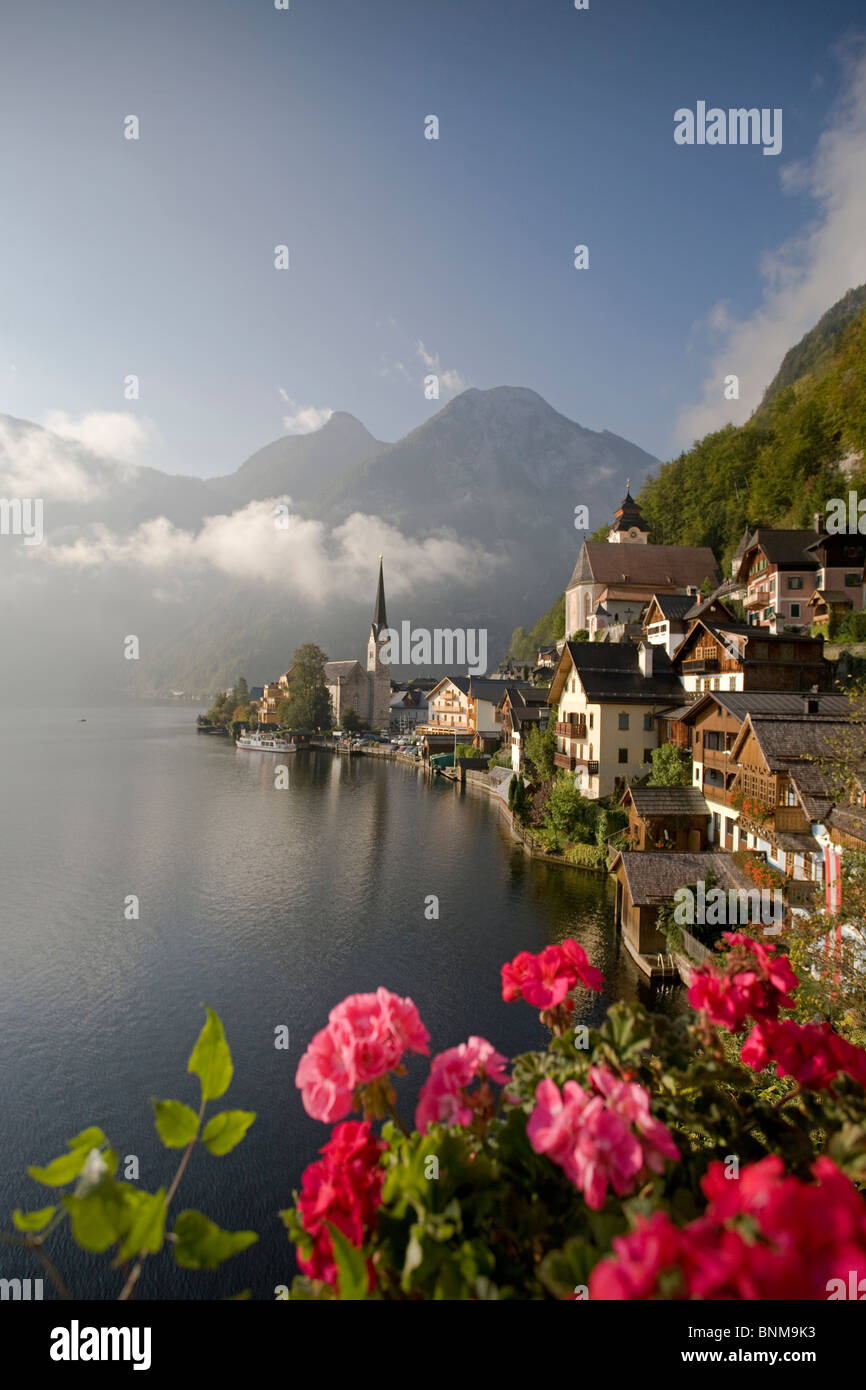 Austria Hallstatt Salzkammergut Austria Superiore lago Hallstätter lake patrimonio culturale mondiale gerani Immagini Stock
