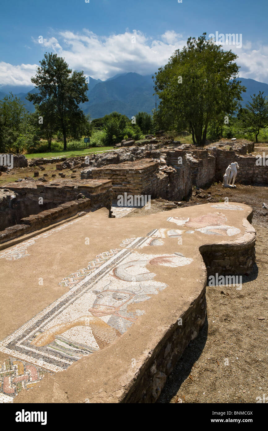 Un mosaico nel grande complesso di bagni di antica Dion, Grecia. 2a-3a c. Annuncio. Vista verso il monte Olimpo. Foto Stock