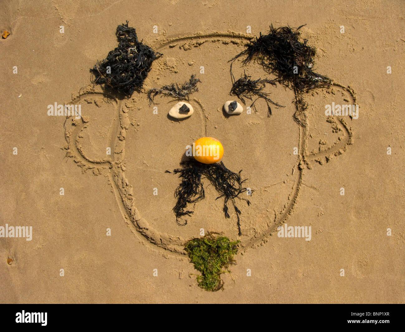 Un Disegno Sulla Sabbia Di Una Faccia Buffa Con Una Barba Di Alghe