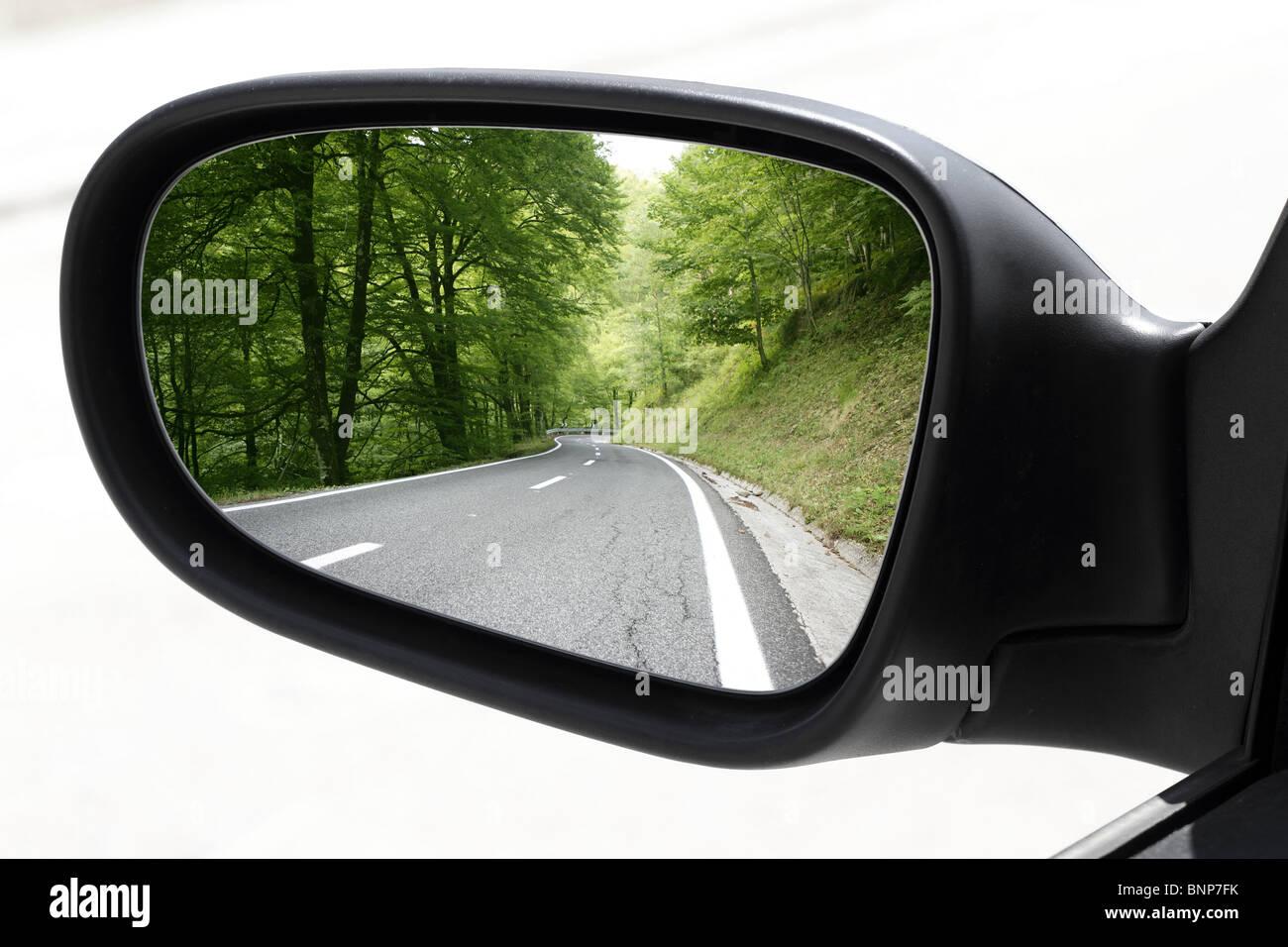 Specchietto di guida auto mirror view foresta verde road Immagini Stock