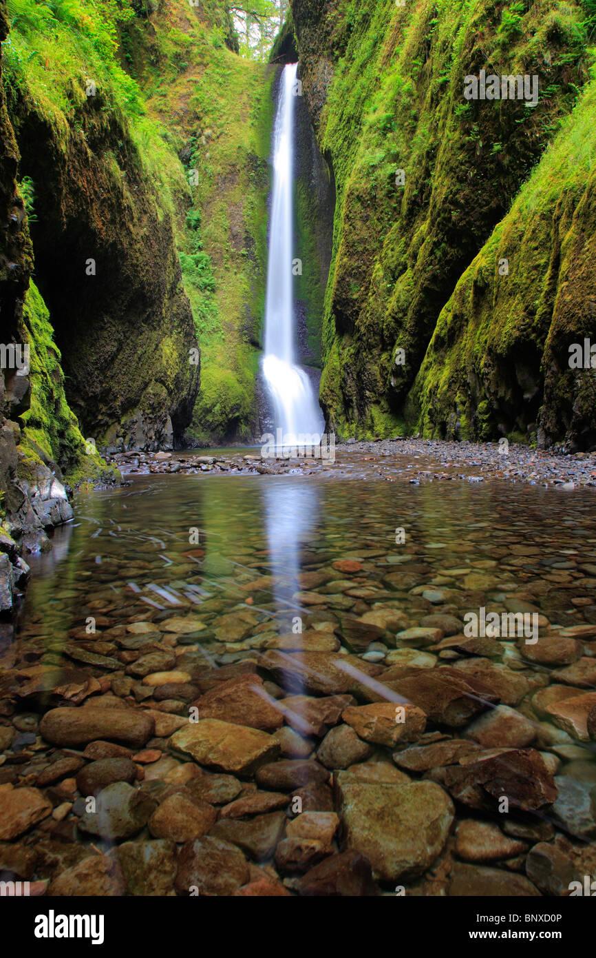 Abbassare Oneonta cade in Oneonta Gorge è in Columbia River Gorge, Oregon Immagini Stock