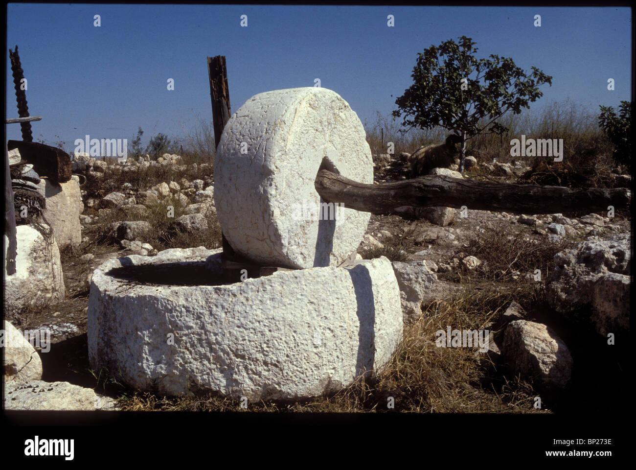 Olio di oliva premere. Le olive vengono poste in un bagno pietra sagomata INSTALATION POI IL molto pesante pietra Immagini Stock