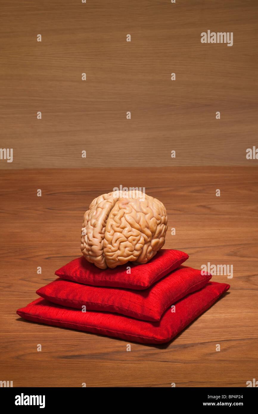 Concetto cervello su cuscini di colore rosso Immagini Stock