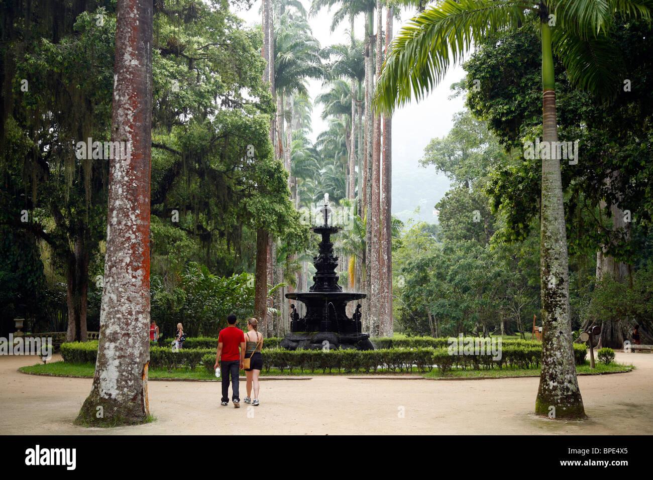 Il Jardim Botanico o i giardini botanici, Rio de Janeiro, Brasile. Immagini Stock
