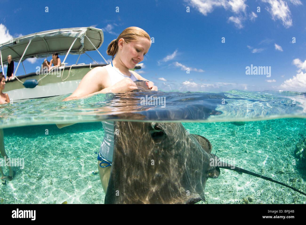 Laguna safari viaggio a fare snorkelling con marinelife - razze, piccoli squali blacktip e una varietà di colorati Immagini Stock