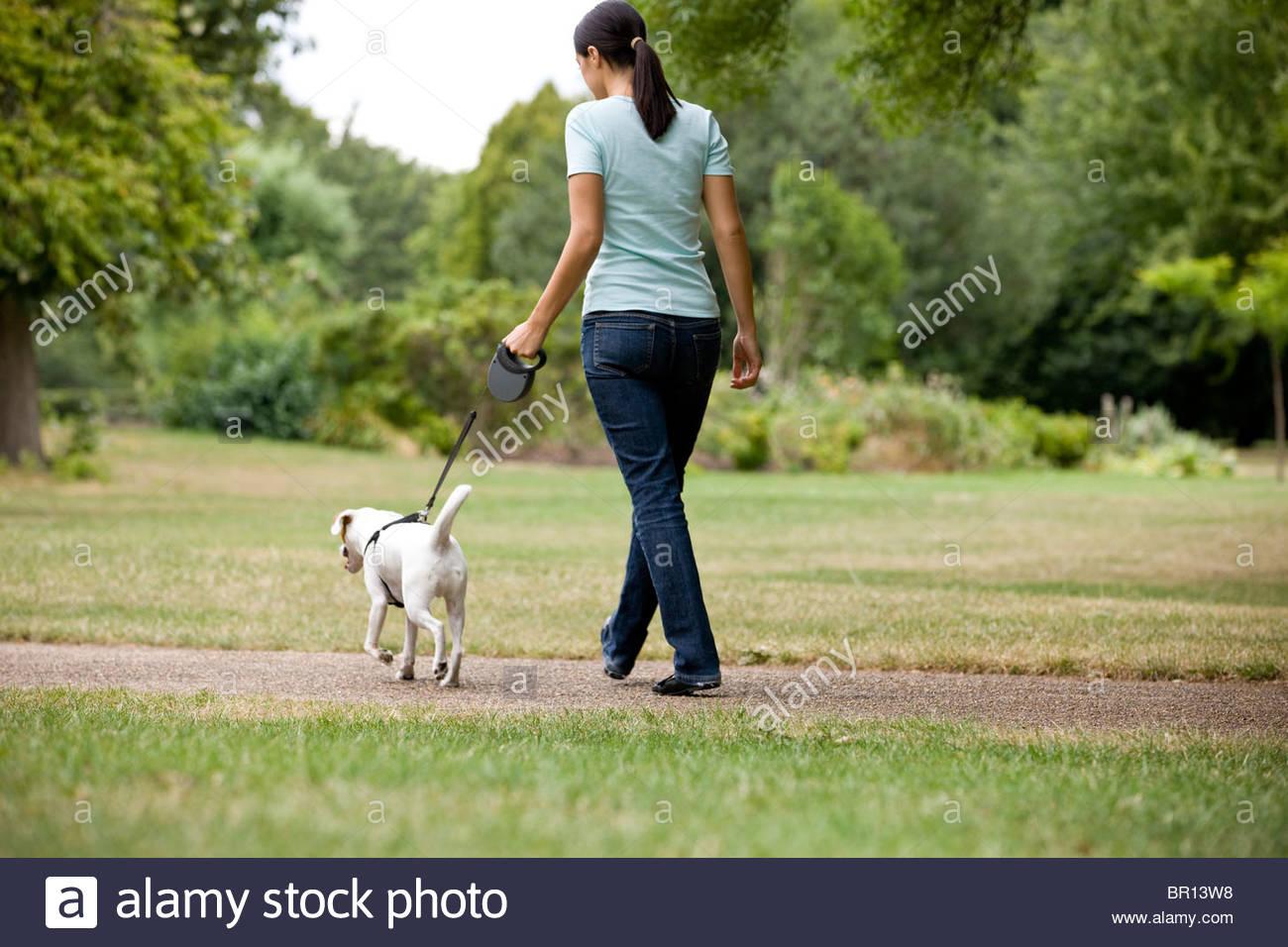 Una giovane donna che cammina il suo cane nel parco Immagini Stock