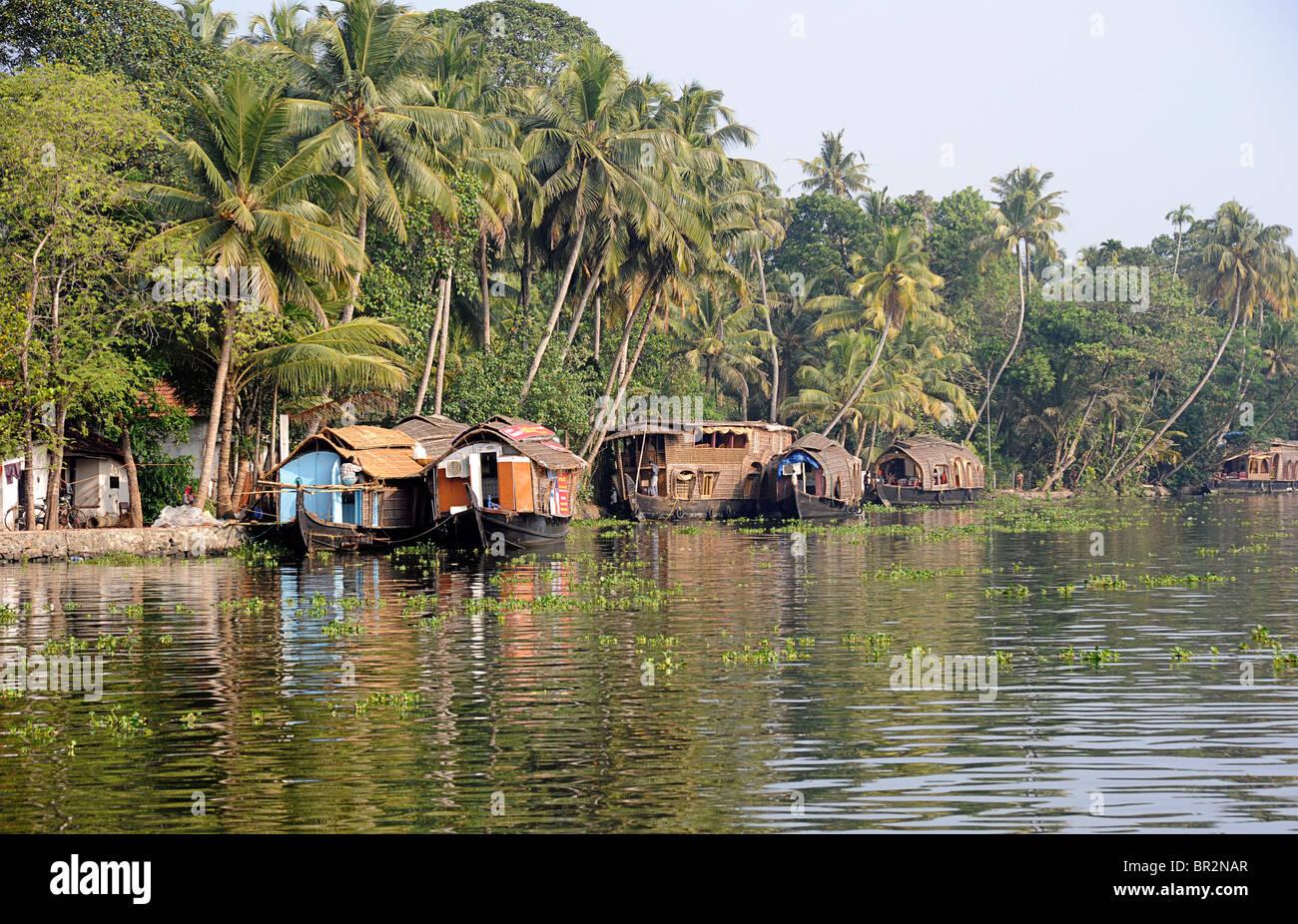 Tranquille lagune di Alleppey, Kerala, India Immagini Stock