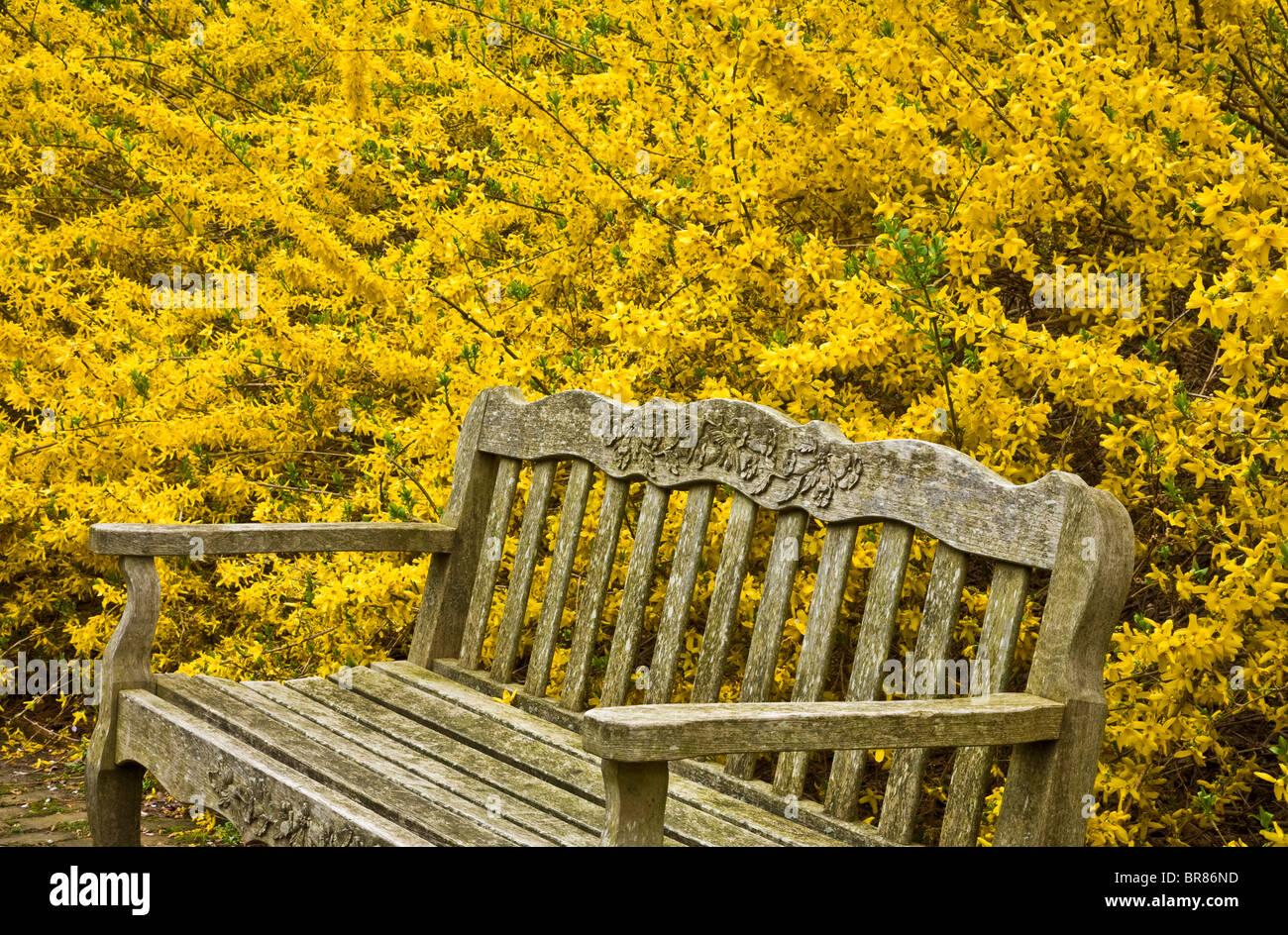 Panchine Da Giardino Colorate.Chiudere Fino In Legno Panchina Da Giardino Con Colorate Fioriture