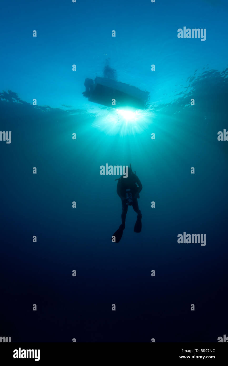 Silhouette di un subacqueo in Cuba Immagini Stock