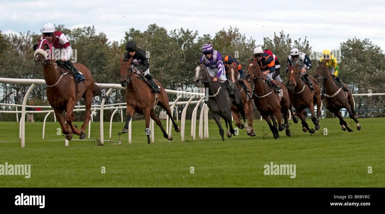 Corse di cavalli sulla curva, Hamilton (Musselburgh gare), Lanarkshire, Scozia, Regno Unito, Europa occidentale. Immagini Stock