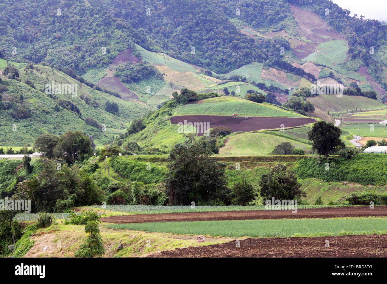 Paesaggio di fattoria in Cerro Punta, Chiriqui, Panama Immagini Stock