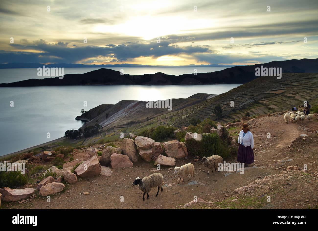 Una donna con pecora, Isla del Sol, il lago Titicaca, Bolivia Immagini Stock