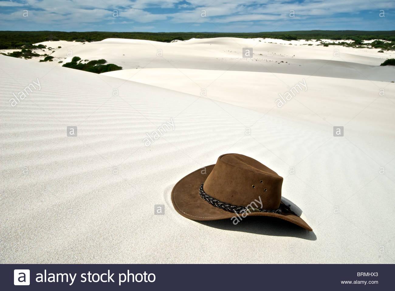 Un australiano Episteme hat giacente nella sabbia di Little Sahara. Immagini Stock