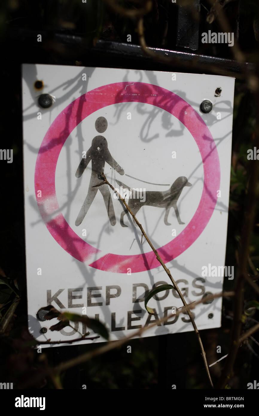Si prega di tenere i cani in segno di piombo. Immagini Stock