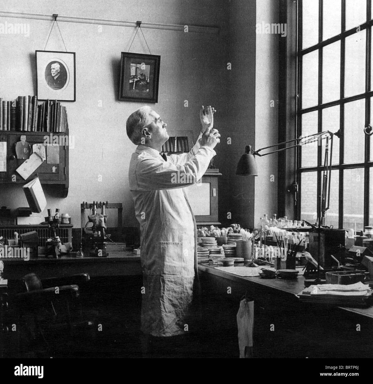 SIR Alexander Fleming (1881-1955) biologo scozzese / farmacologo nel suo laboratorio presso l'ospedale St Mary, Immagini Stock