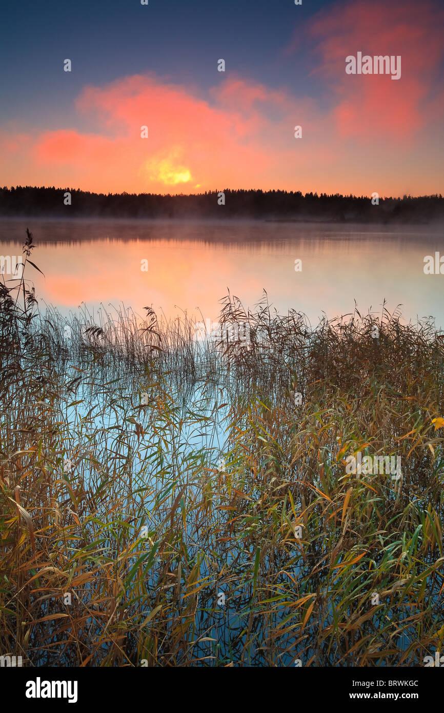 Sunrise a Hvalbukt nel lago Vansjø, Rygge kommune, Østfold fylke, Norvegia. Immagini Stock