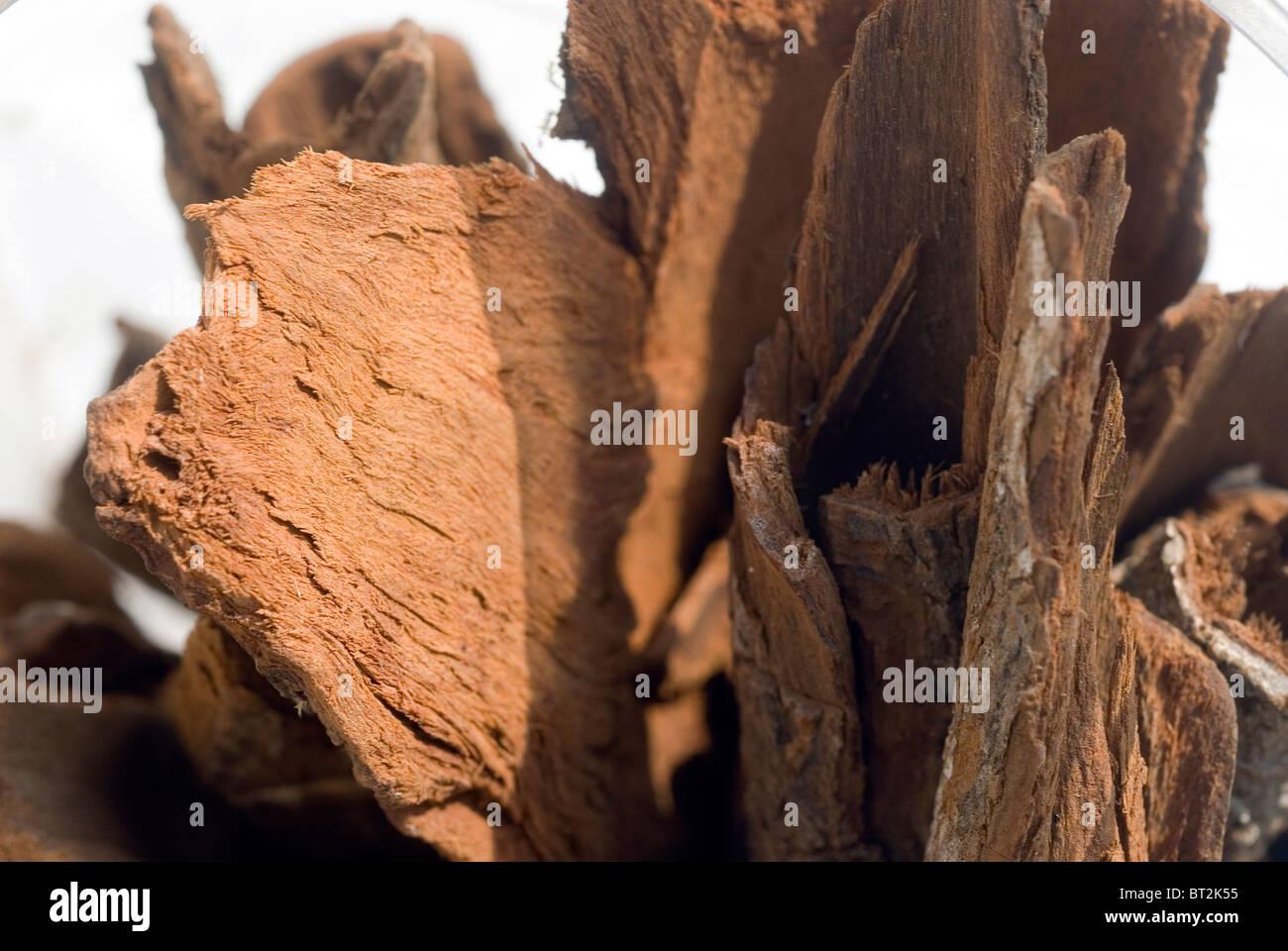 Corteccia di China con ombre Immagini Stock