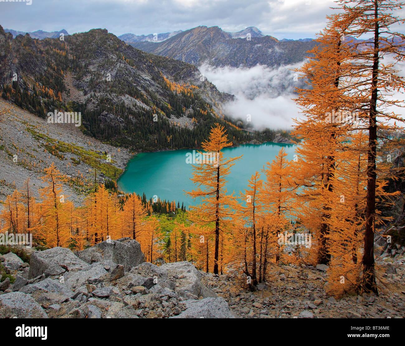 I larici a Asgaard Pass, alta sopra il lago Colchuck, nell'Incanto Lakes Wilderness dello stato di Washington Immagini Stock