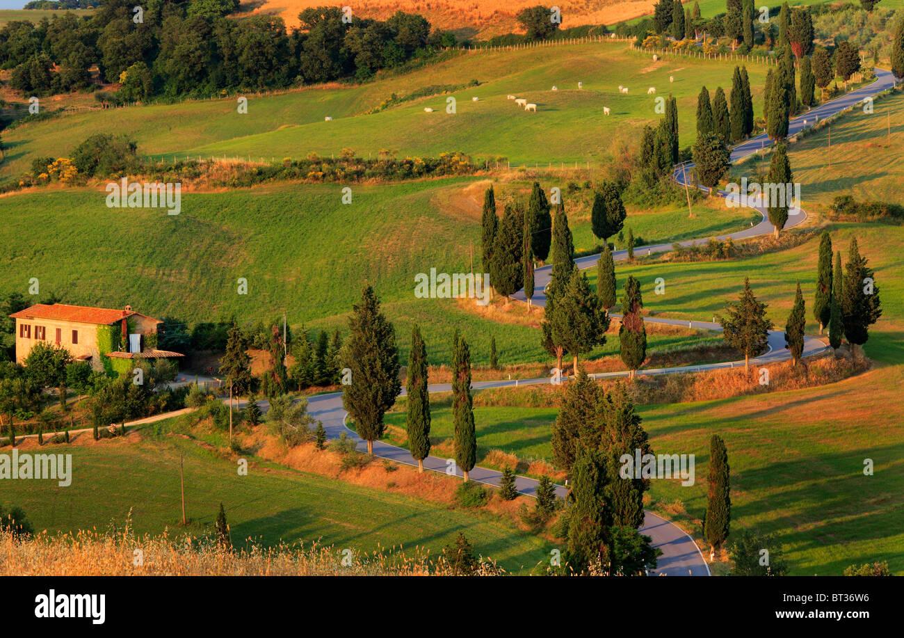 Strada rurale vicino alla città toscana di Monticchiello Immagini Stock