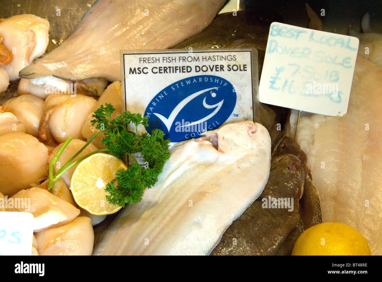 Fresco pesce Hastings Marine Stewardship Council MSC sostenibile certificate sogliola di Dover in vendita su Rock Immagini Stock