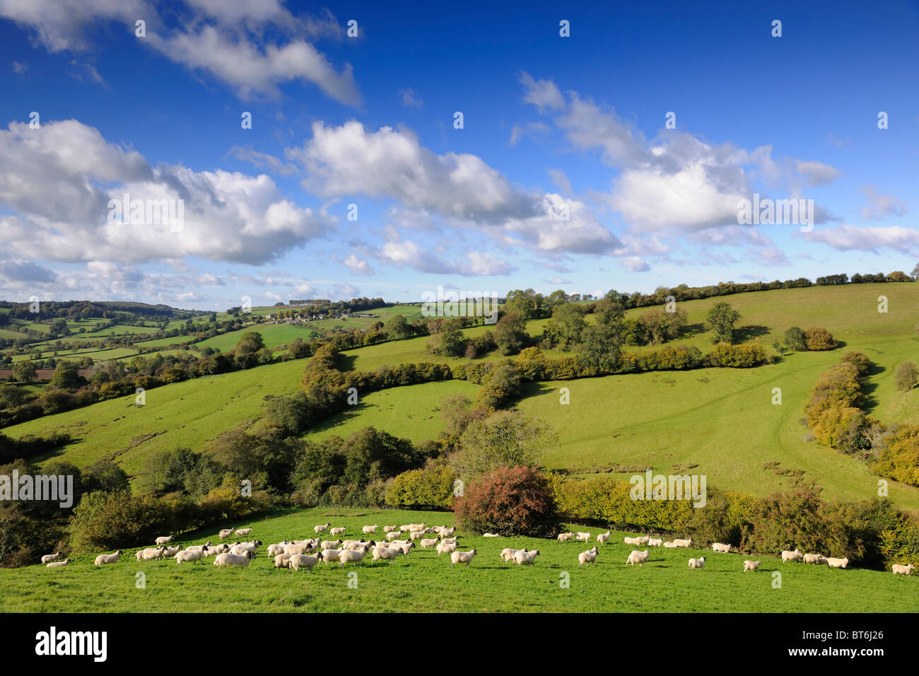 Paesaggio inglese Immagini Stock