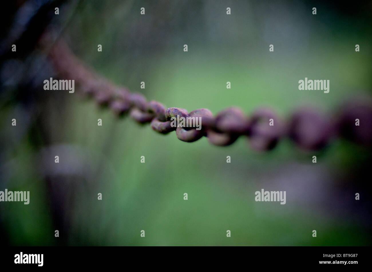 Una forte catena di metallo Immagini Stock