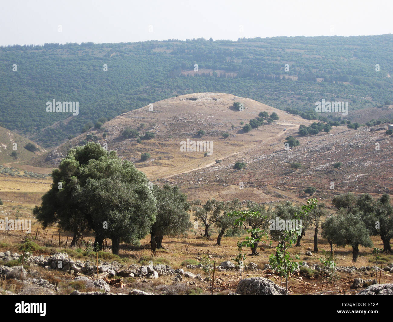 5499. Yodphat, antica città situata nel sud della Galilea. Yodphat era uno dei centri del grande rivolta contro Immagini Stock