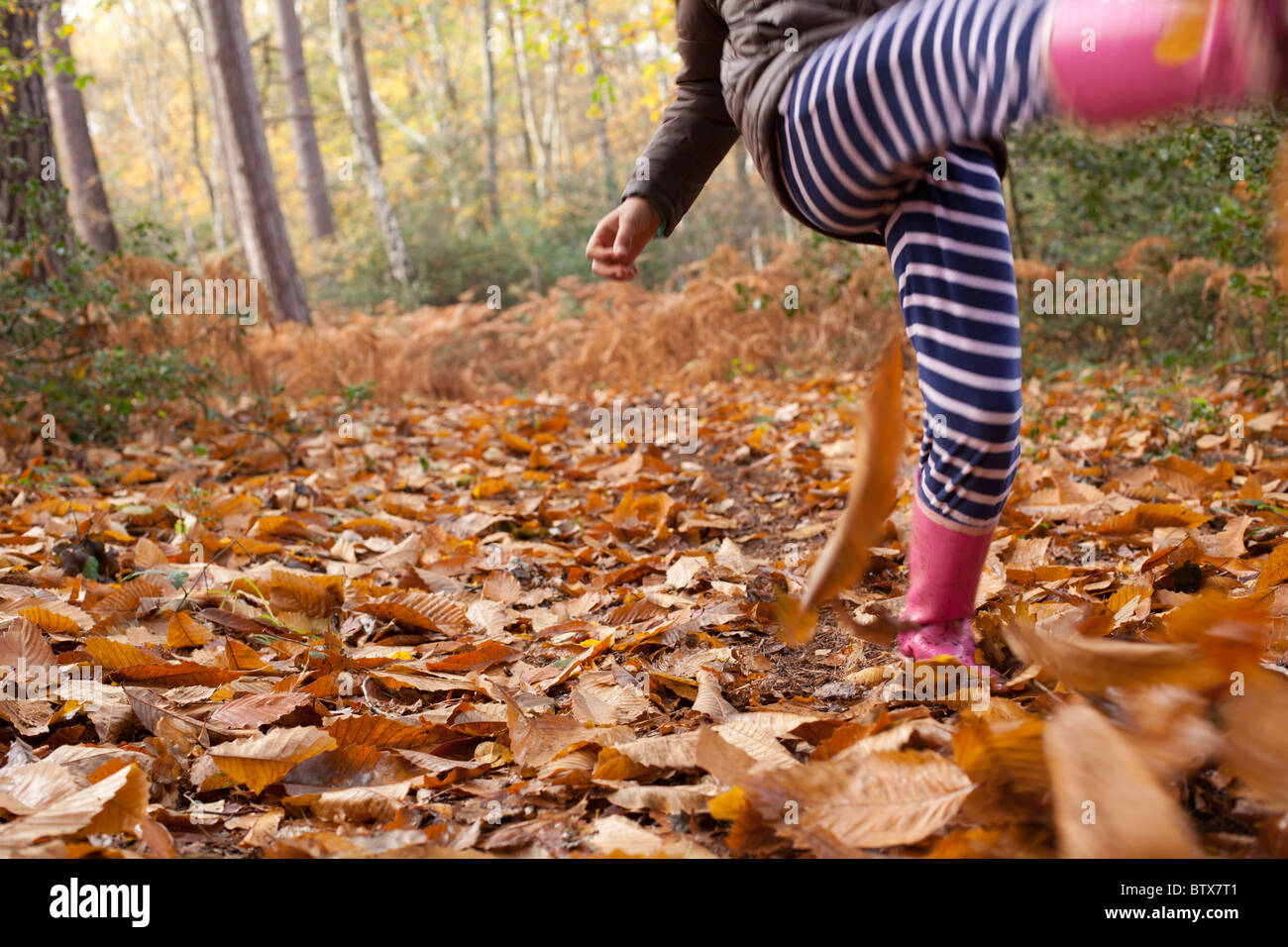 Bambino calci lascia nel bosco Immagini Stock