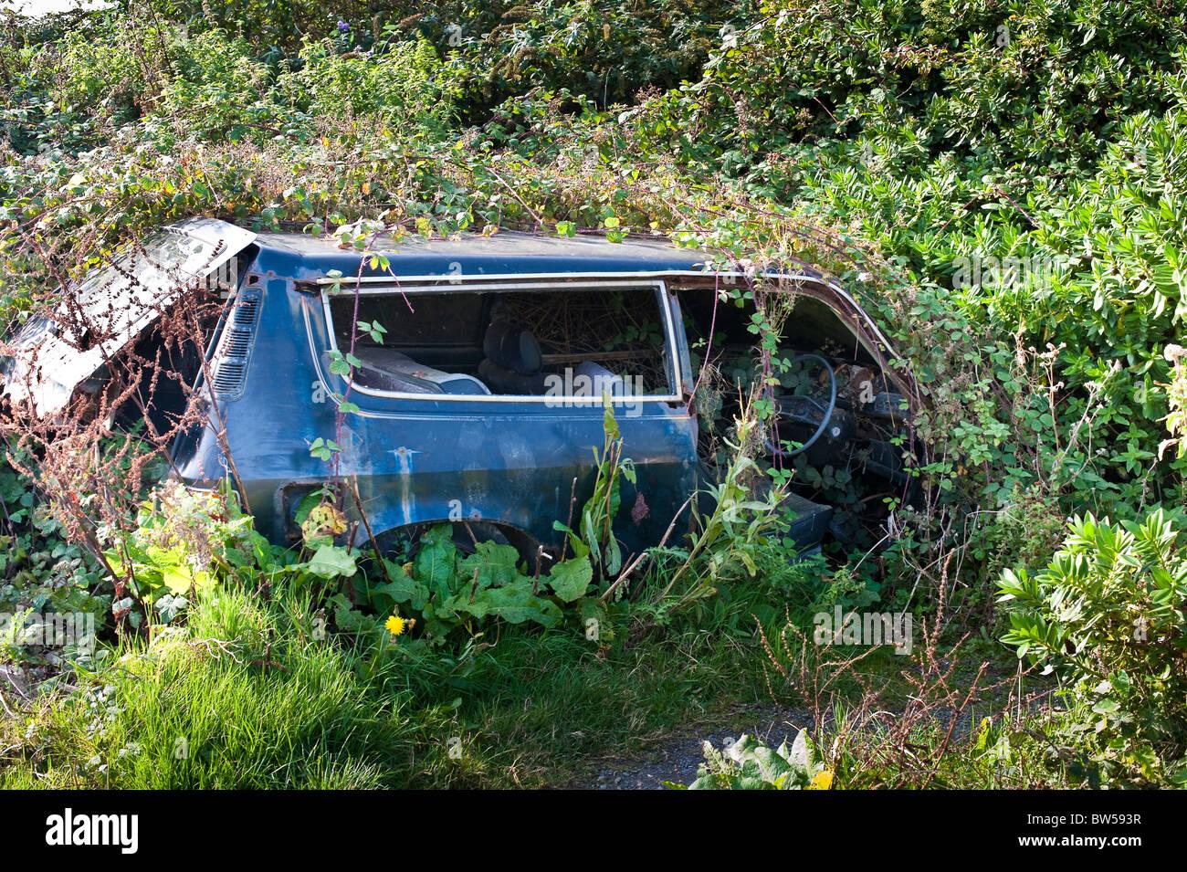 Abbandonato incolto Austin Allegro auto in Condino Devon UK Immagini Stock