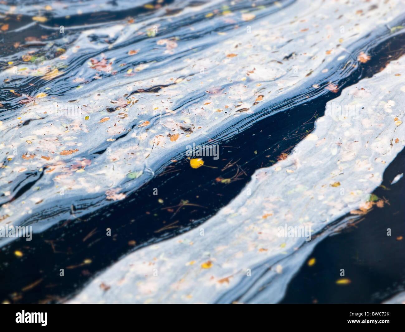 Acqua di fiume inquinamento - messa a fuoco selettiva Immagini Stock