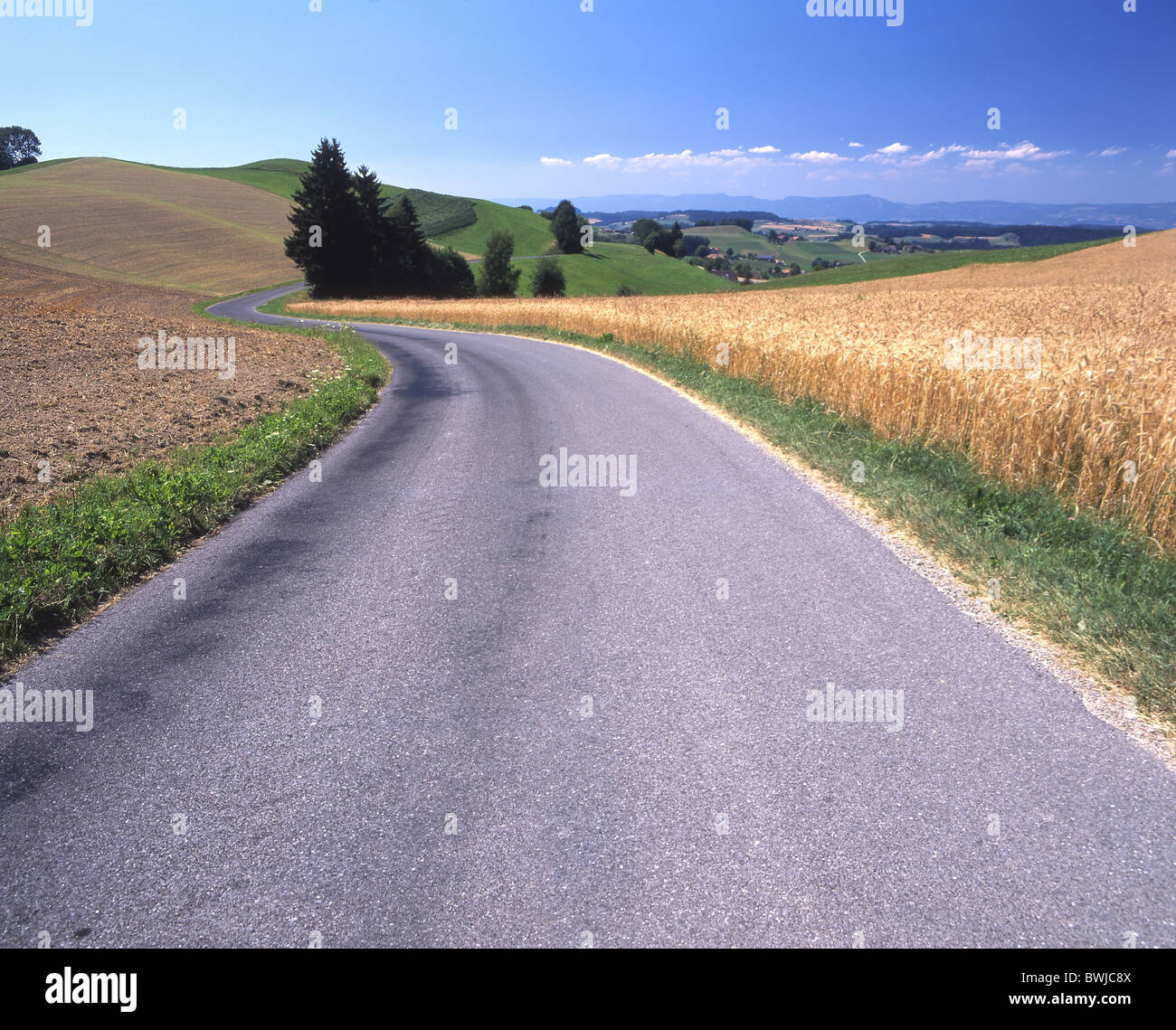 Strada strada di campagna sulle colline di campi Emmental paesaggio paesaggio canton Berna Svizzera Europa Foto Stock