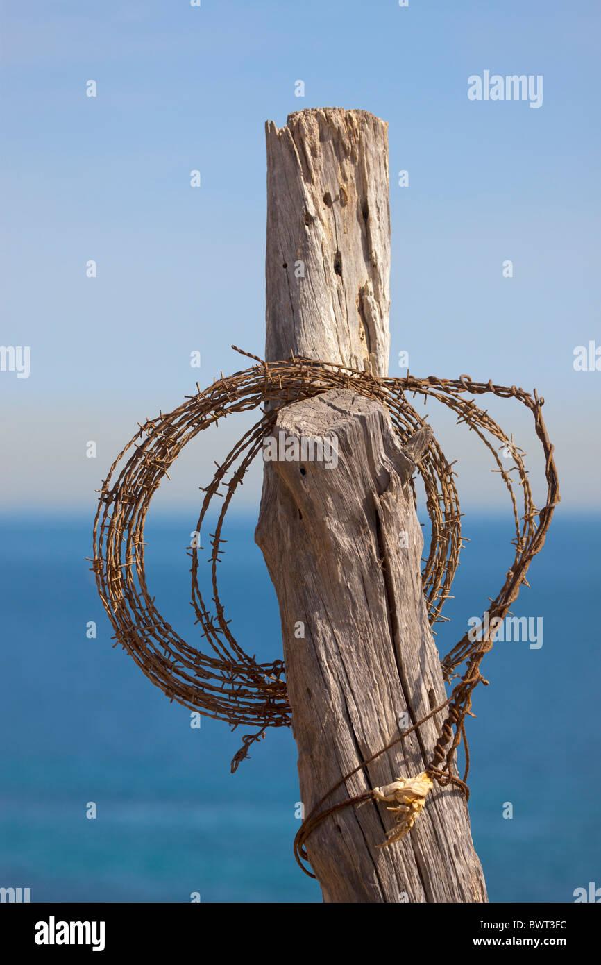 Rotolo di filo spinato appeso sul vecchio post di scherma. Mare in background. Immagini Stock