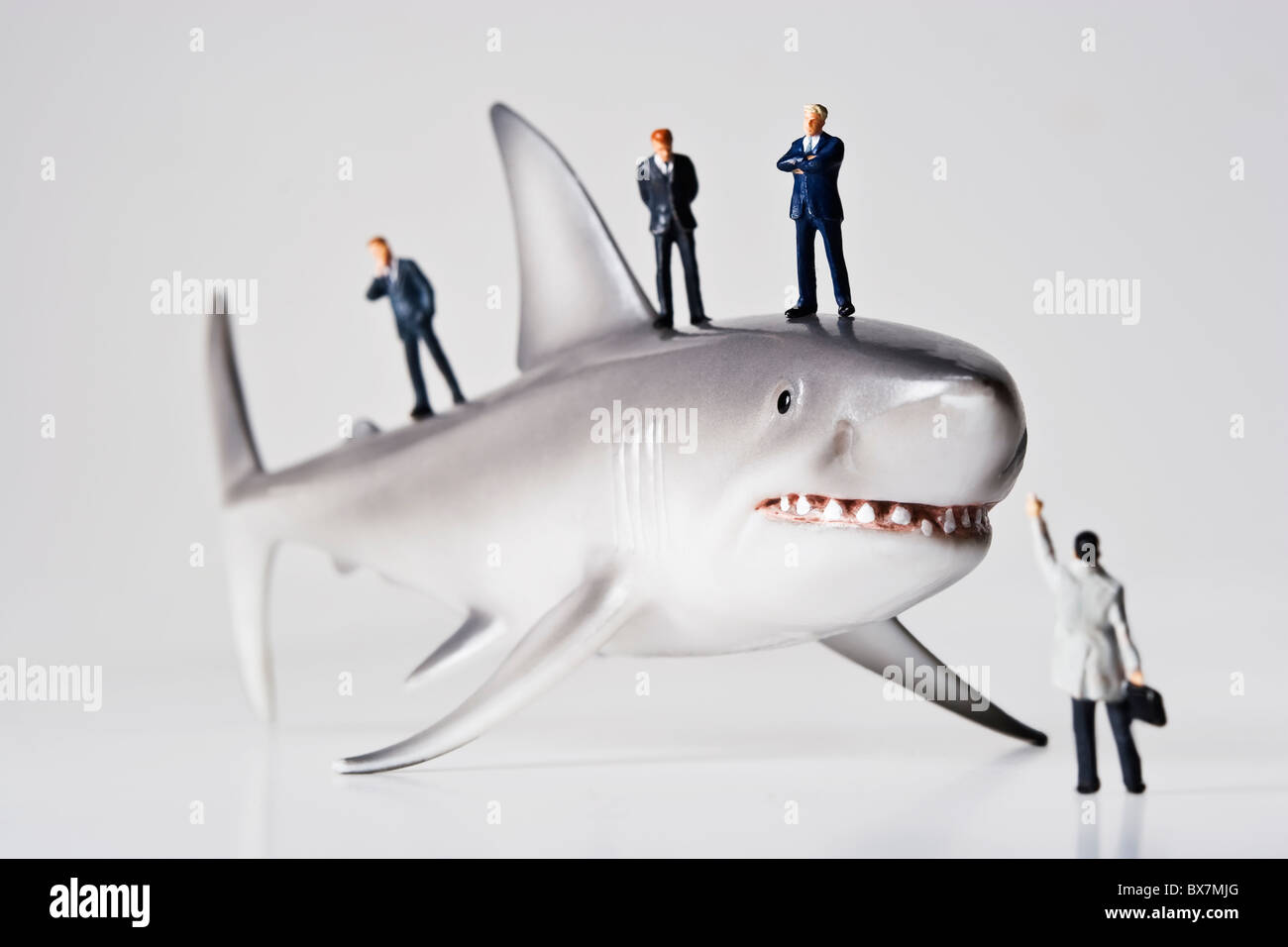 Business figurine collocato con una statuetta di squalo. Immagini Stock