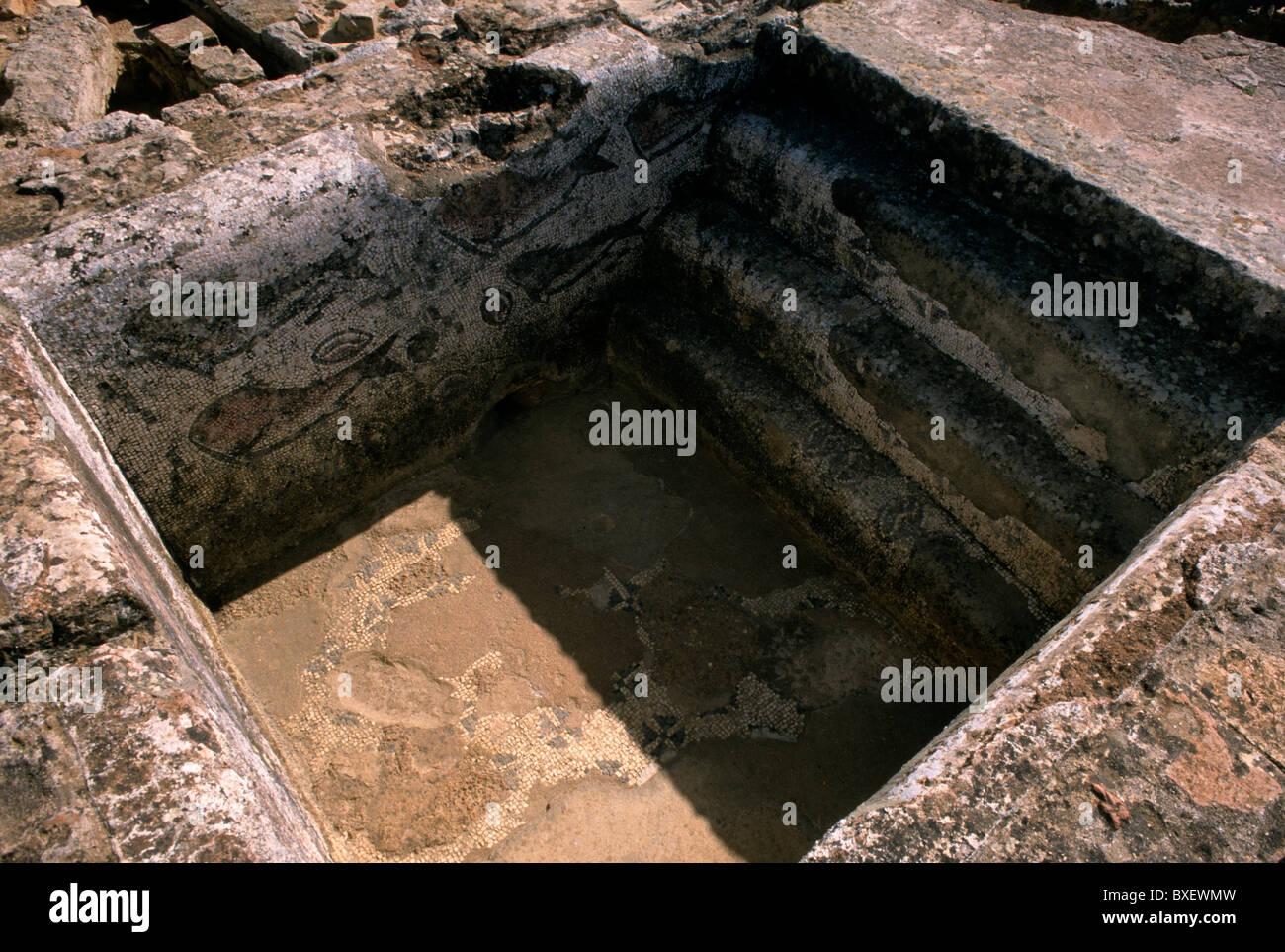 I resti di una vasca da bagno completo con mosaici di pesce a