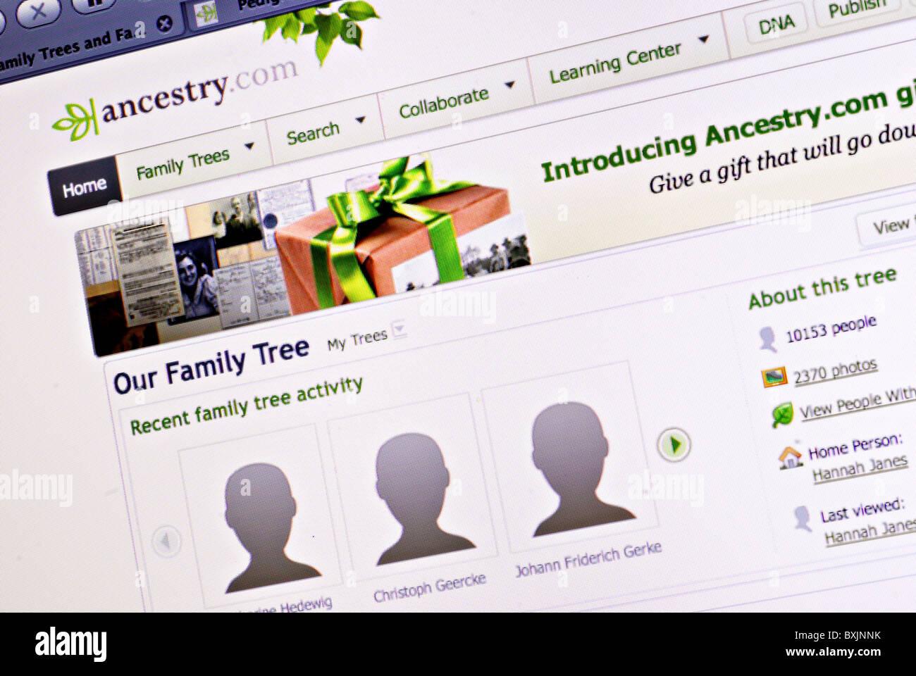Albero di famiglia e la genealogia informazioni su Ancestry.com Immagini Stock