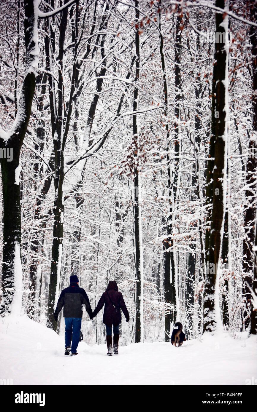 Stagione invernale, la coperta di neve foresta. Persone su una passeggiata su un sentiero innevato. Immagini Stock