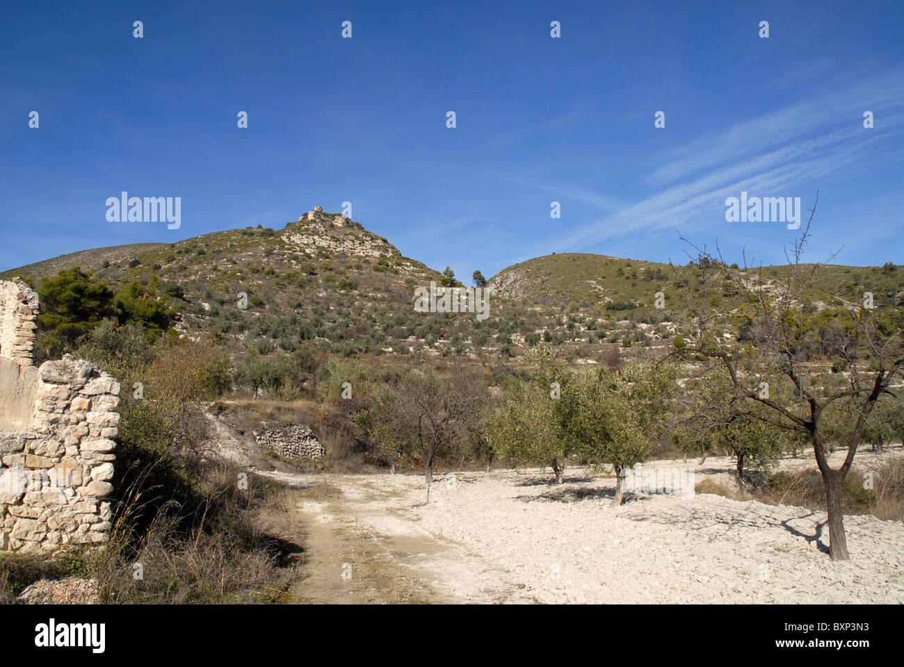 Vista castilo de Costurera con mandorli in f/g, nr Balones, Vall de Seta, Provincia di Alicante, Comunidad Valenciana, Immagini Stock