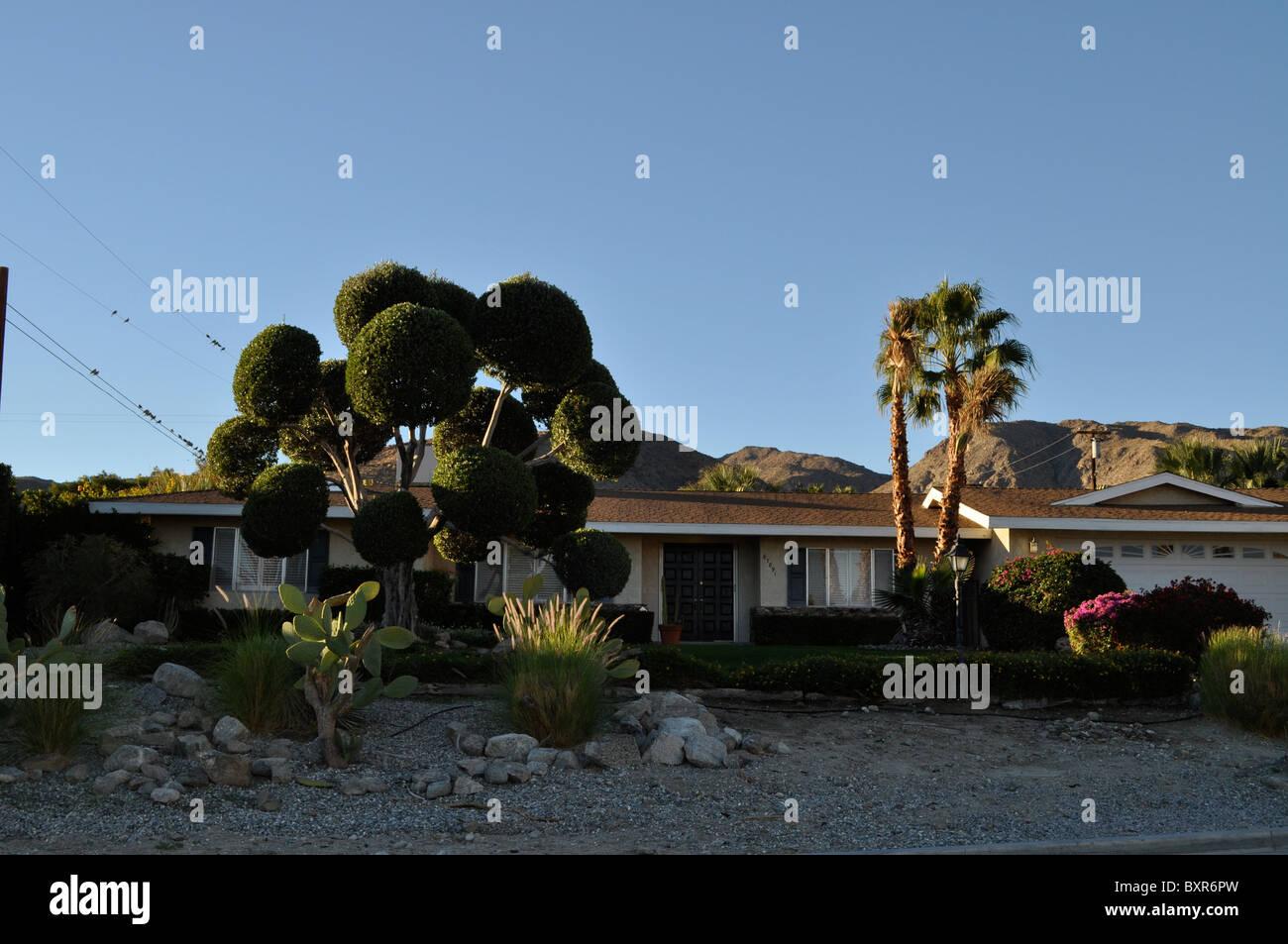Palm Springs risalente