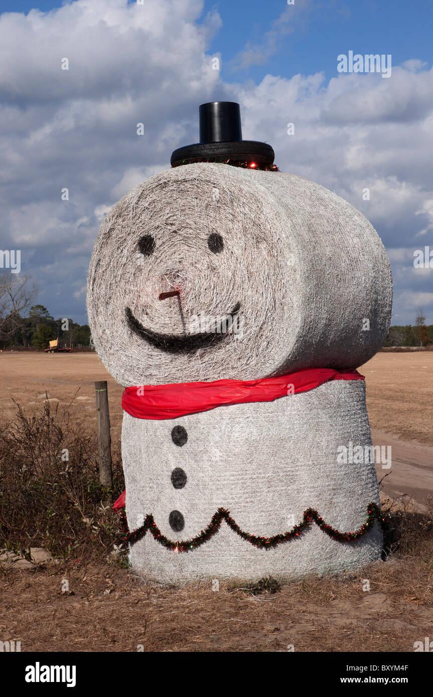 Pupazzo di neve realizzato a partire da rotoli di fieno accanto a nord di pascolo della Florida Immagini Stock