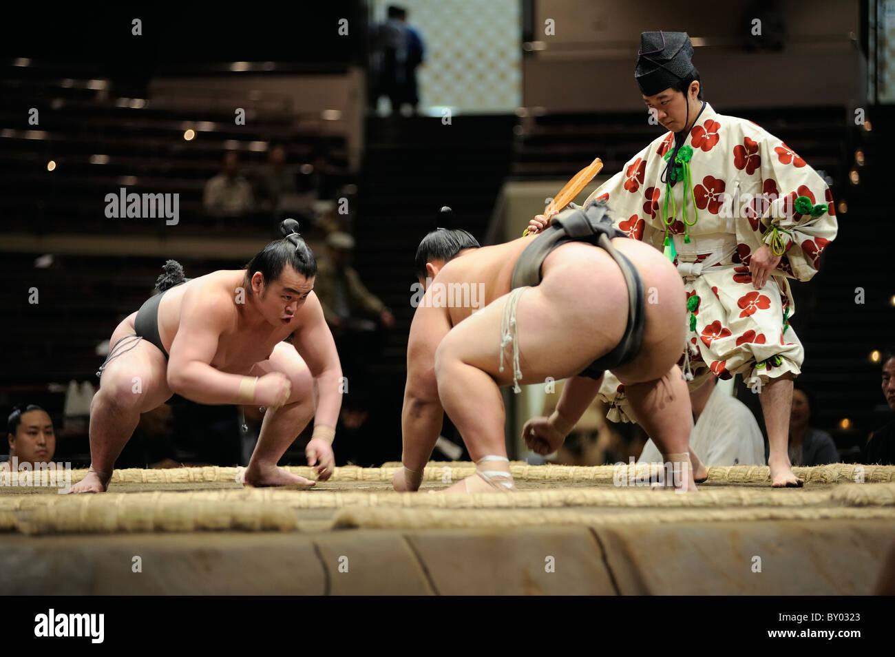 Due lottatori di sumo a partire lo scontro, Grandi Campionati di Sumo maggio 2010, Ryogoku Kokugikan, Tokyo, Giappone Immagini Stock