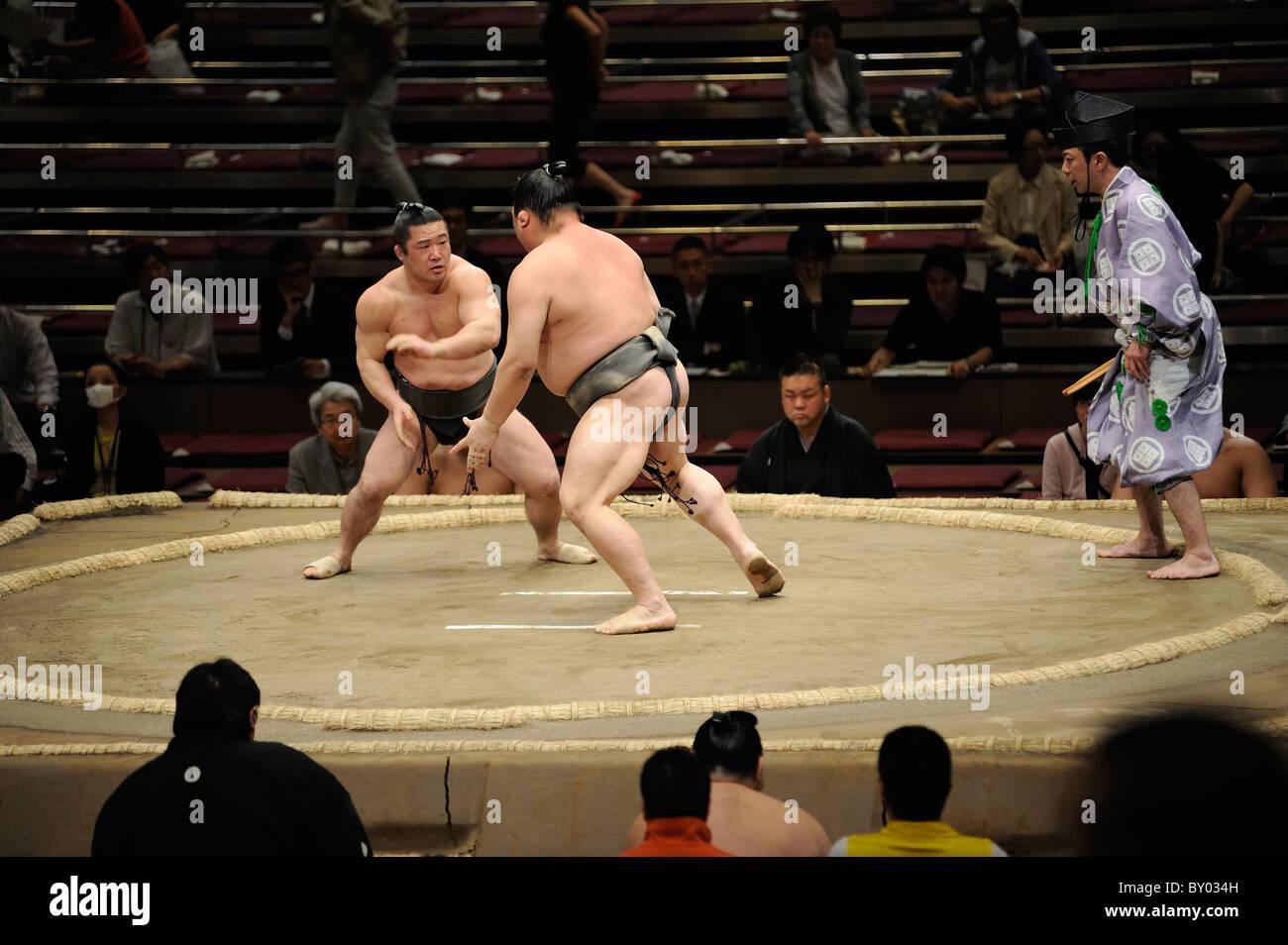 Due lottatori di sumo durante bout, Grandi Campionati di Sumo maggio 2010, Ryogoku Kokugikan, Tokyo, Giappone Immagini Stock