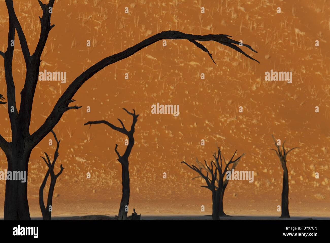 Gli alberi morti in argilla secca pan, Dead Vlei, Soussusvlei, Namibia, Africa Immagini Stock