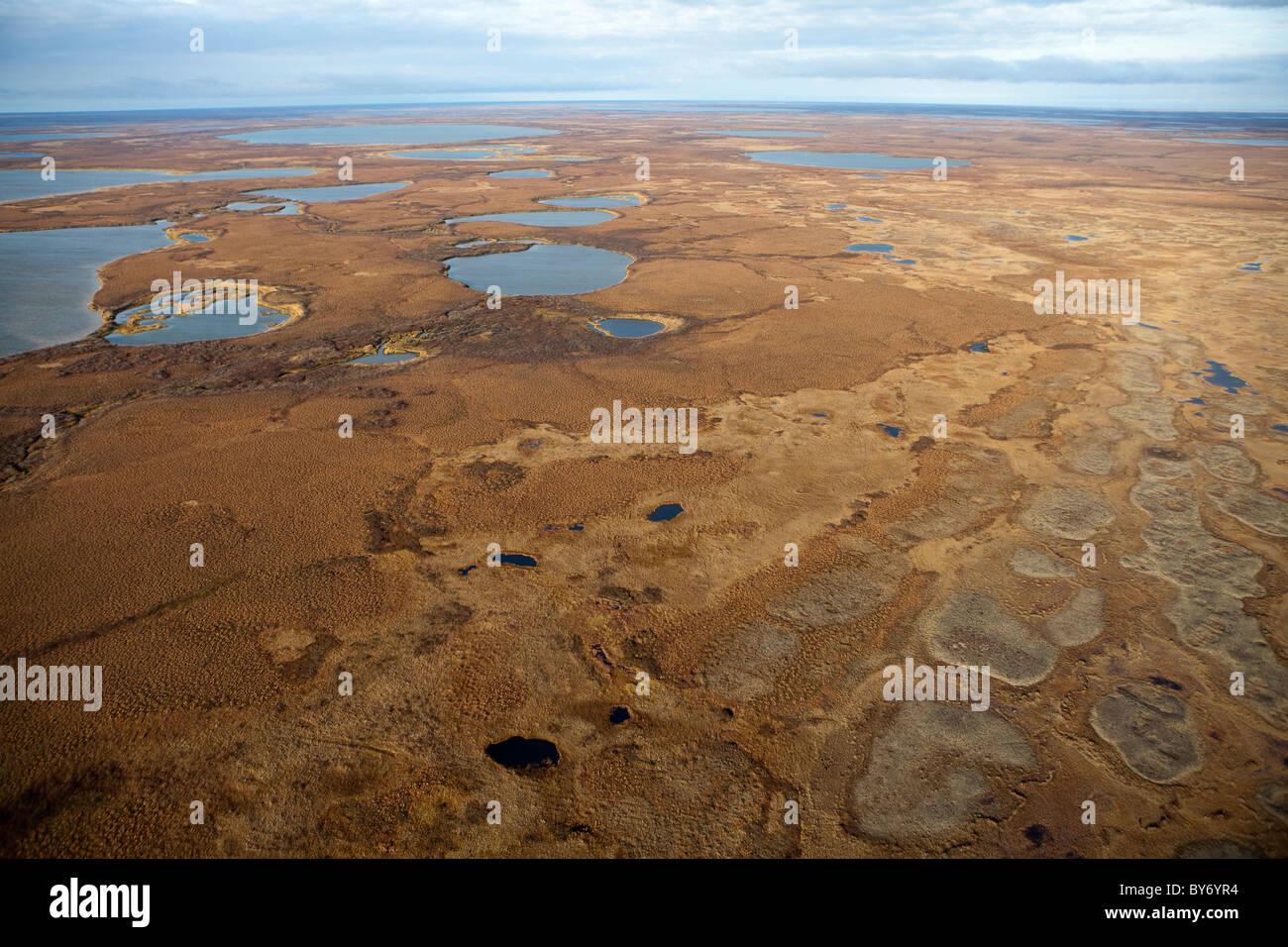 La penisola di Yamal , Siberia occidentale , Russia . La tribù Nenet modo della vita di fronte da minacce di Immagini Stock
