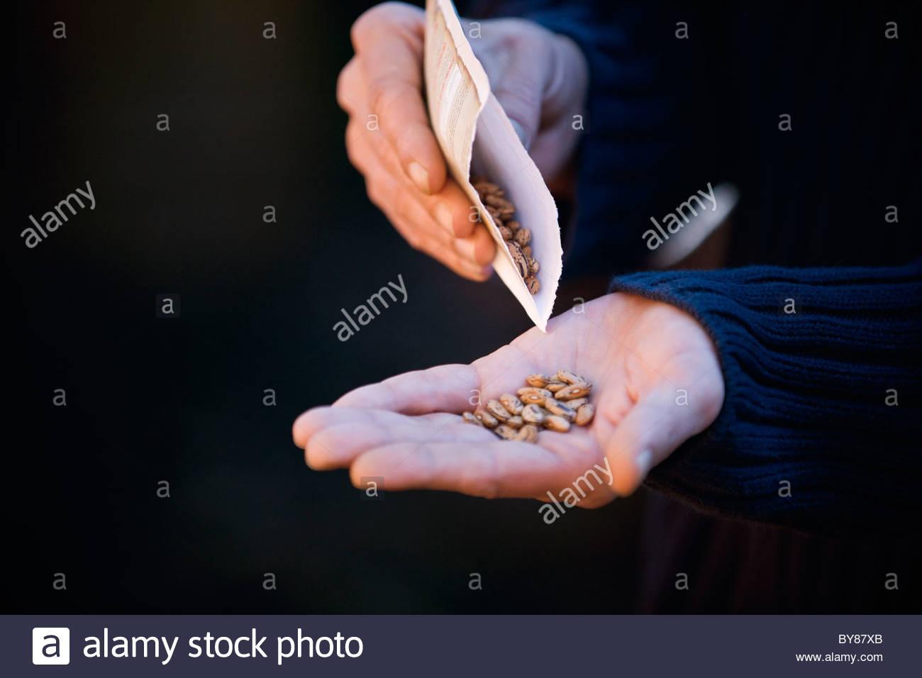 Un uomo versando semi nella sua mano Immagini Stock