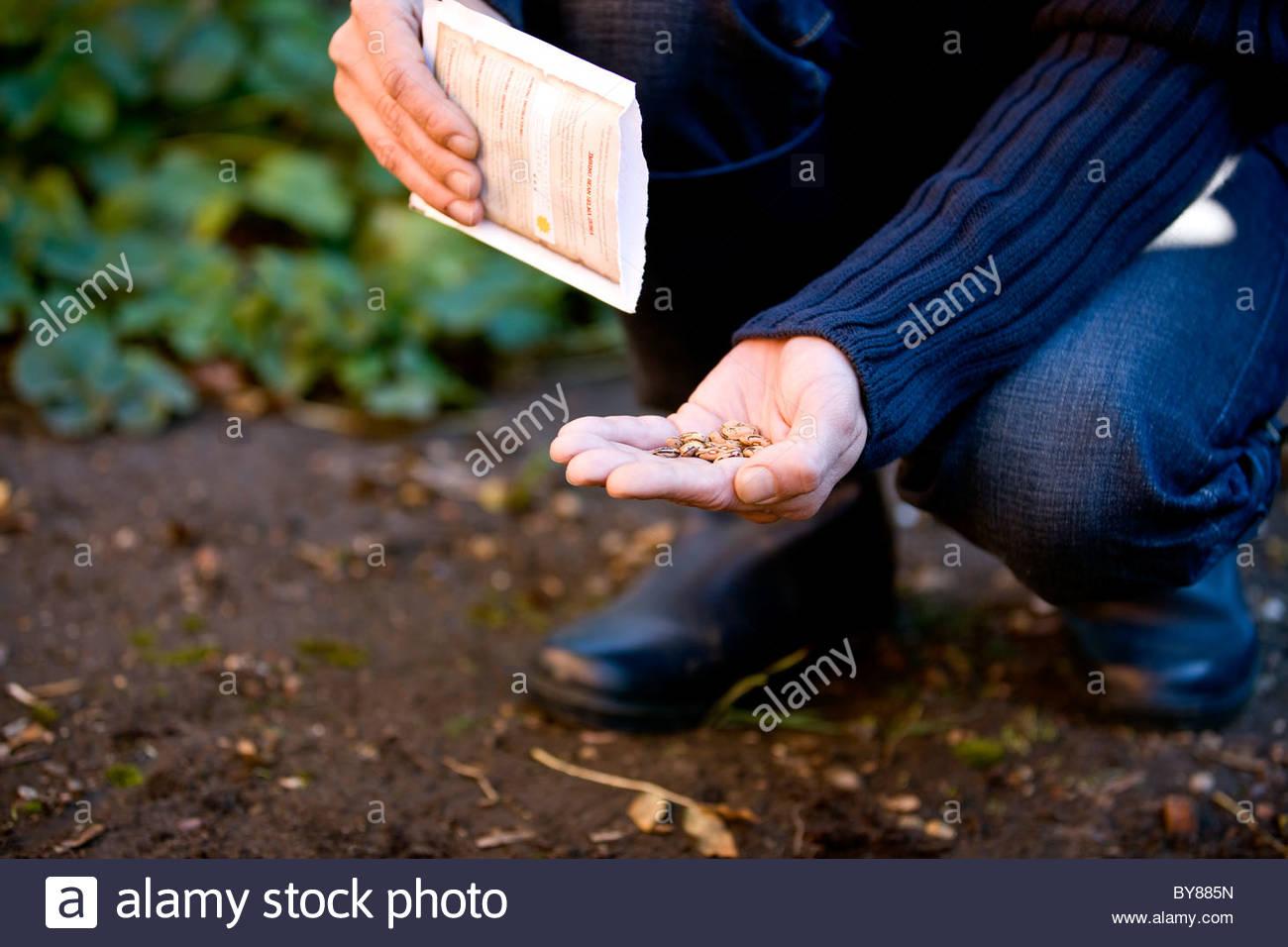Un uomo la semina di semi Immagini Stock