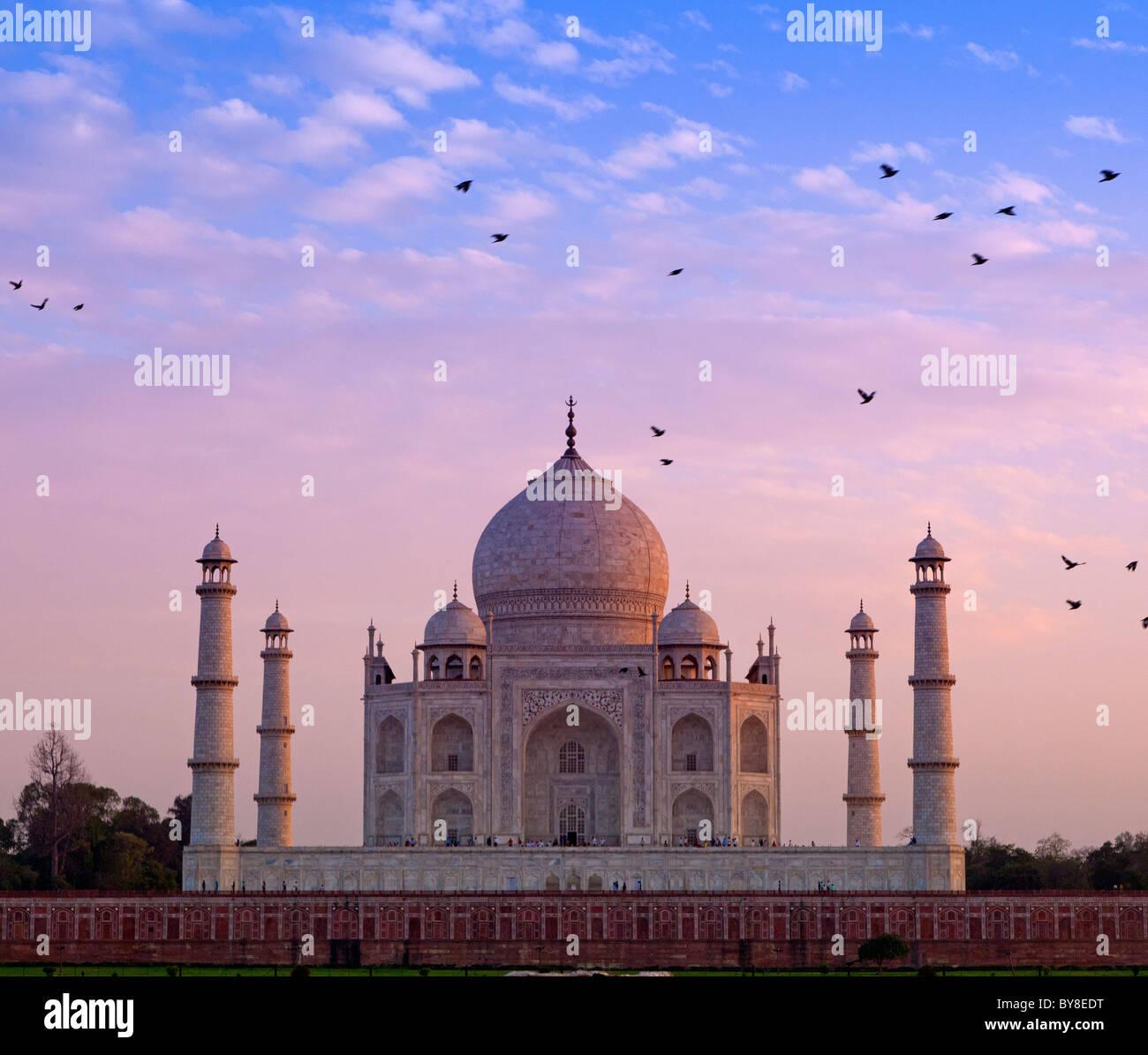 India, Uttar Pradesh, Agra, uccelli battenti vicino al Taj Mahal in tarda serata luce Immagini Stock