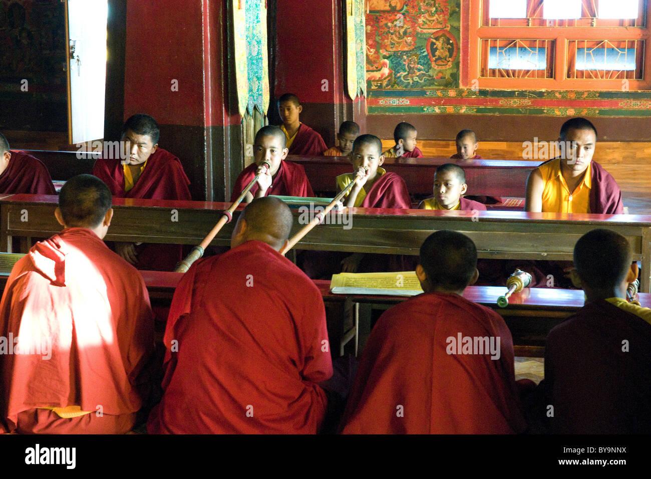servizio di incontri buddisti