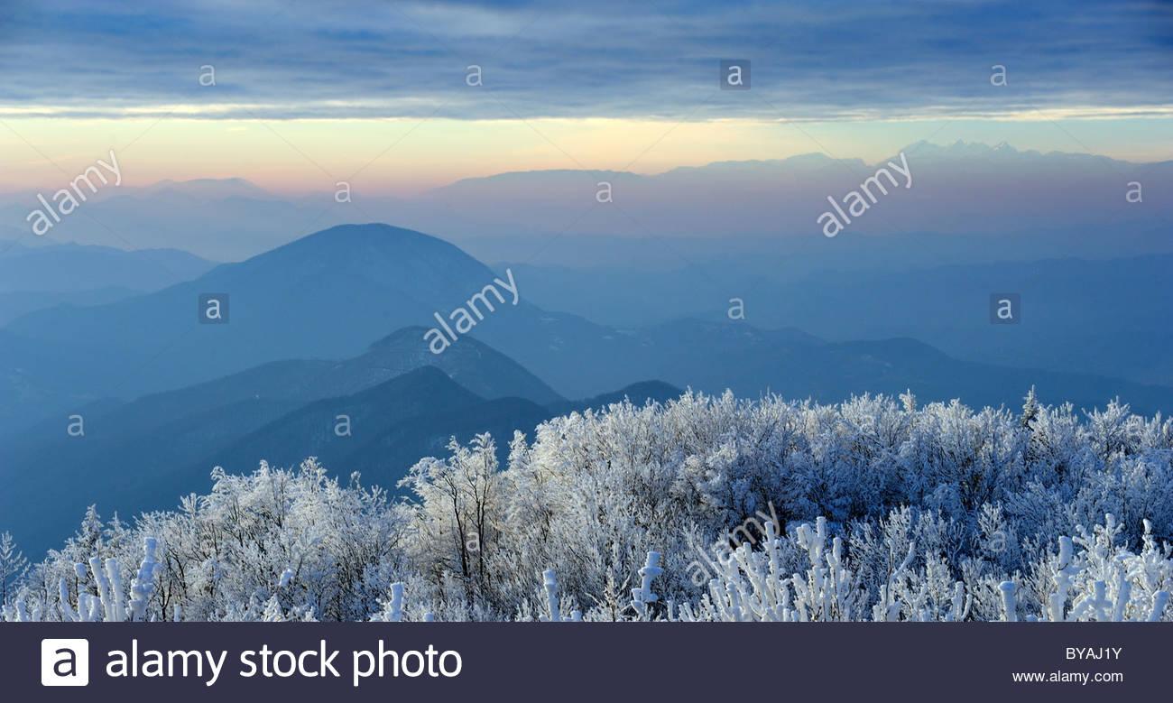 Incantevole paesaggio invernale al tramonto con nebbia e neve Immagini Stock