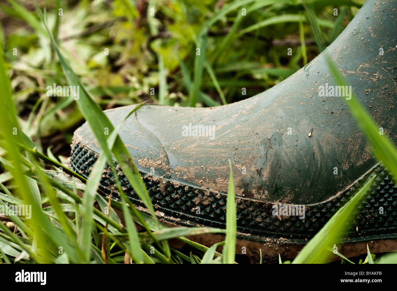 Wellington boot in erba Immagini Stock