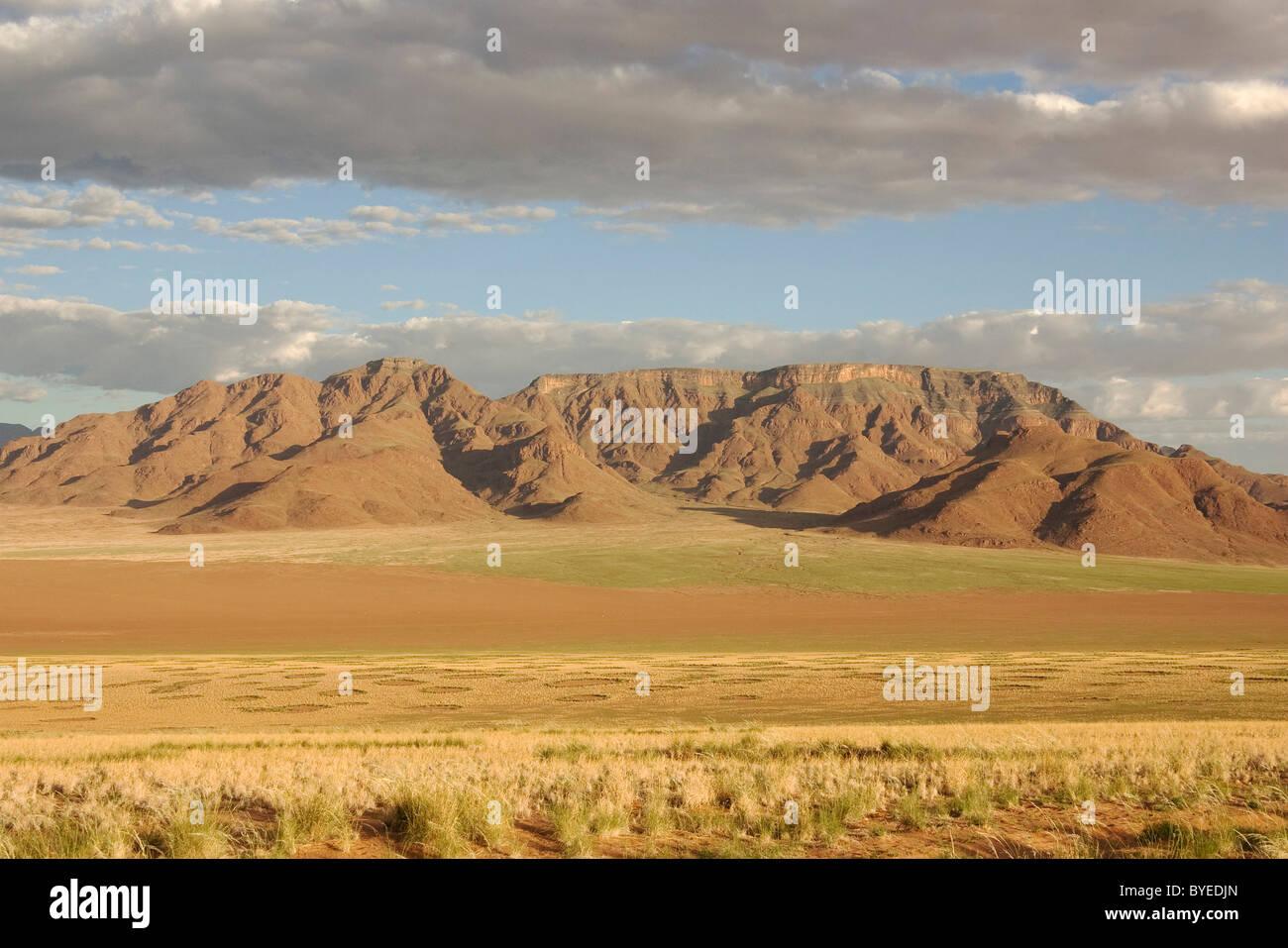 NamibRand Riserva naturale durante la stagione delle piogge con vegetazione verde sul bordo del deserto del Namib Immagini Stock